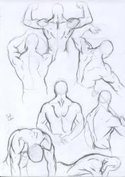 Anatomy studies: male back