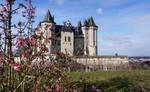 Chateau de saumur by vogesen