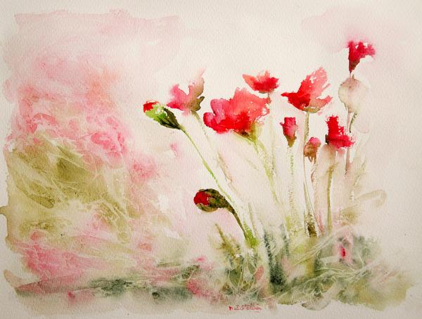 Carnation by vogesen