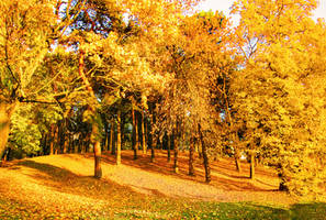 autumn_Minsk_Belarus_2 by juliana9613