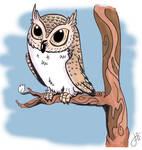 Owltober 28 Contour Owl