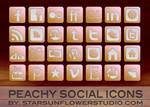 Peach Social Icons