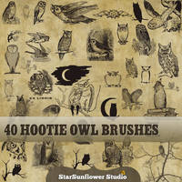 High Res Owl Brushes by starsunflowerstudio