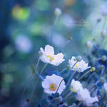 .:Blue Innocence:.