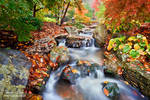 .:Flowing in Colors:.