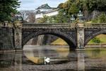 .:Imperial Swan:.