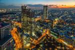 .:Tokyo Metropolis:.