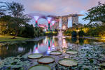 .:Gardens By The Bay:.