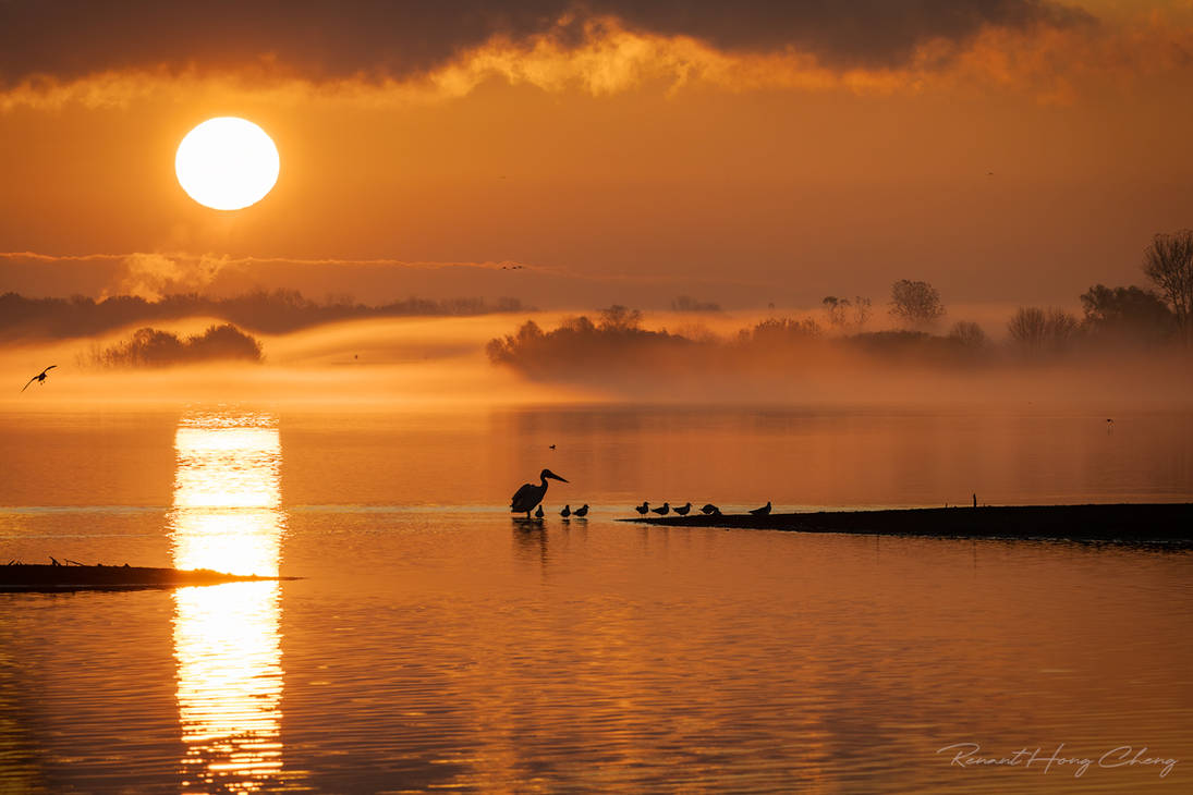 .:Mystical Sunrise:.