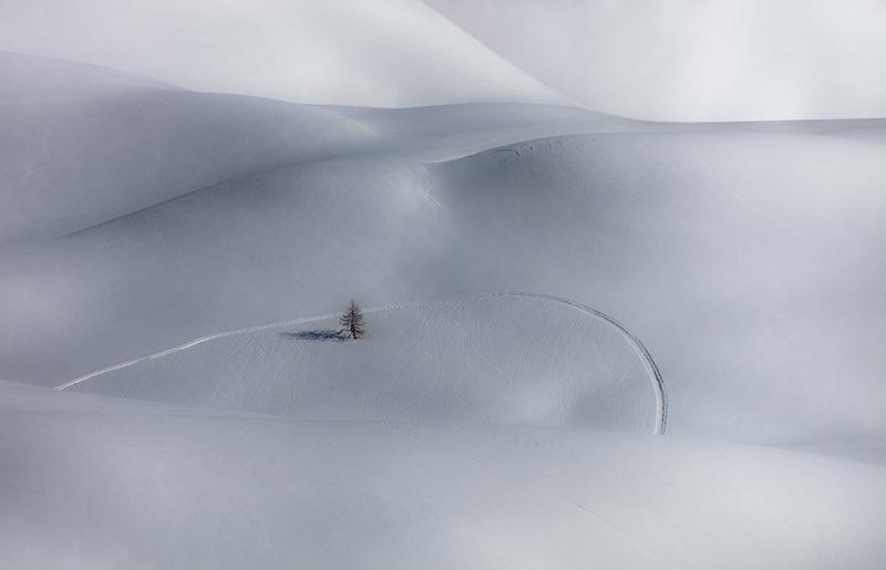 Anybody Here? by RobertoBertero