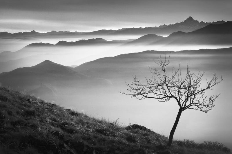 Above the Mist by RobertoBertero
