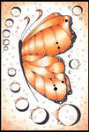butterfly series 6
