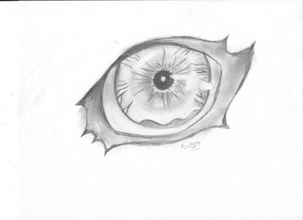 Hadulia Eye ( quick draw) by Frenchfry207