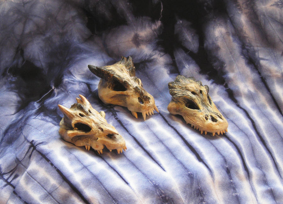 Baby Dragon Skulls by MLPEndlessNight