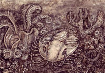 Trilobite ACEO by Banvivirie