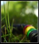 Grass by spAINDer