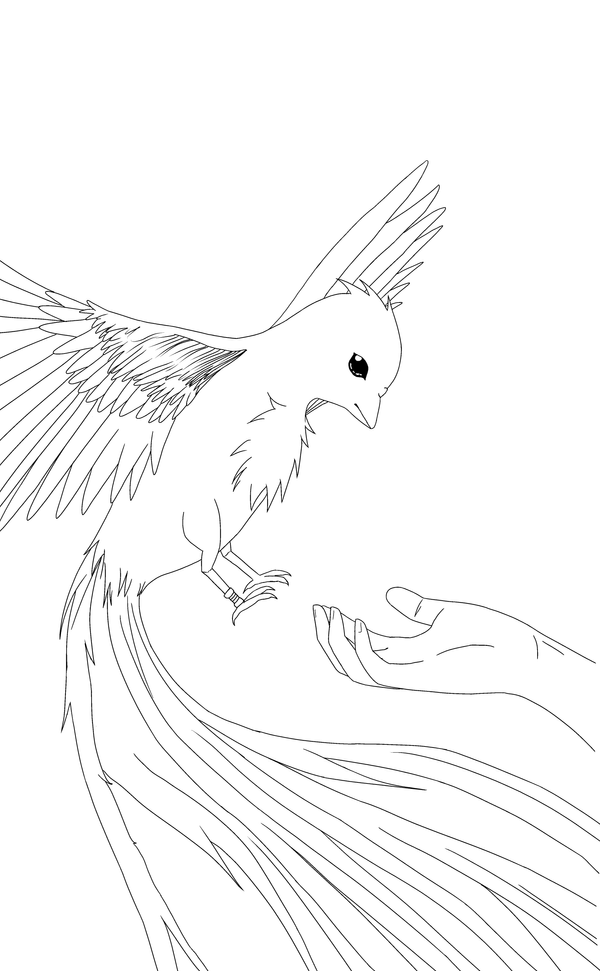 .LINEART. Phoenix Fire Bird By UnknownFelix On DeviantArt