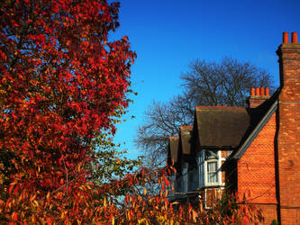 Red Autumn Leaves and Bricks by Hunabku13