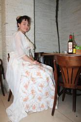 1890's Tea gown