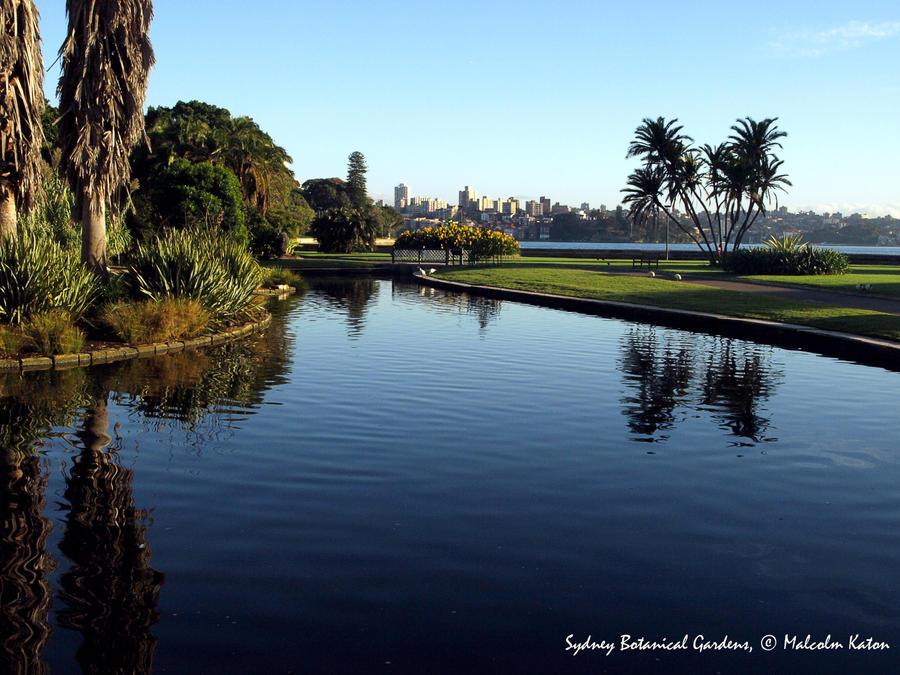 Sydney Botanical Gardens by FireflyPhotosAust