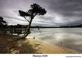 Moruya Sanctuary by FireflyPhotosAust