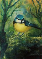 Birdie by muhvu