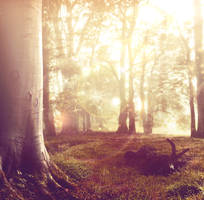 Premade Background 3 by anulubi