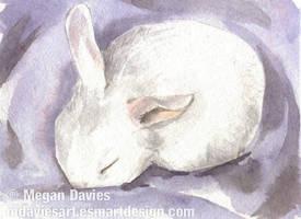 Lavender Dreams ACEO by Pannya