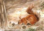 Harvesting Squirrel ACEO