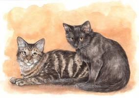 Bernie and Kezia by Pannya