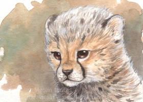 Baby Cheetah ACEO by Pannya