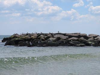 Seagull Island by 4chocolatemew