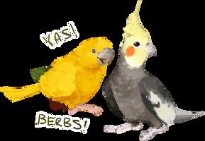 Berbs