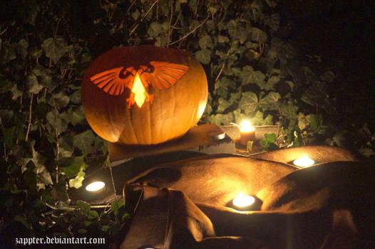 Imperial Aquila in Pumpkin