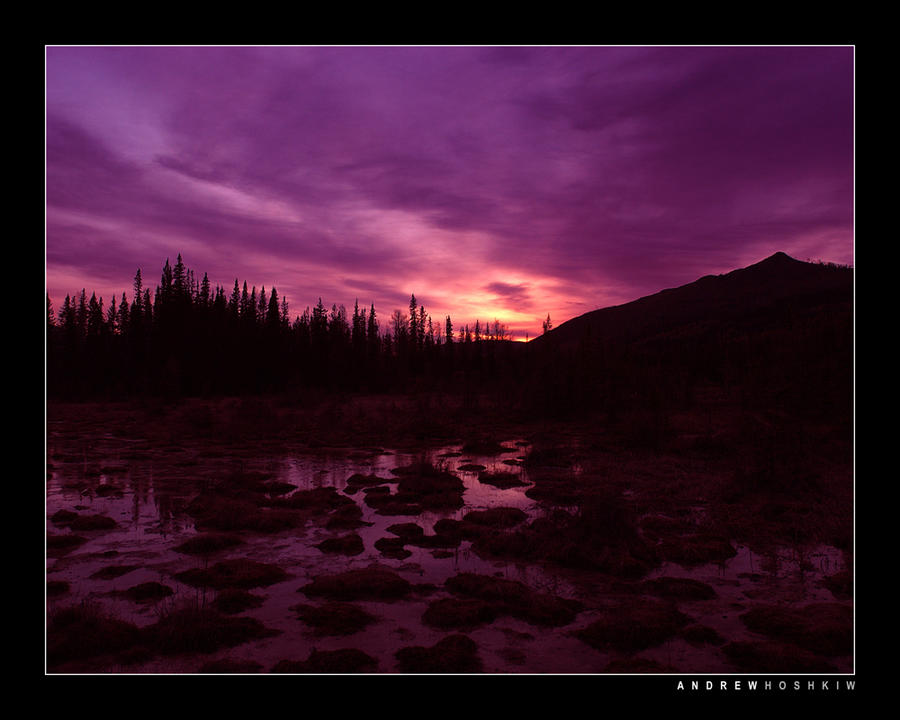 Mulberry Sky, BC (2003) by hoshq