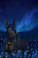 Commisson| Firefly night by LaivaWolf