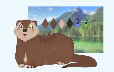 Adopt auction| Otter #1 [closed]