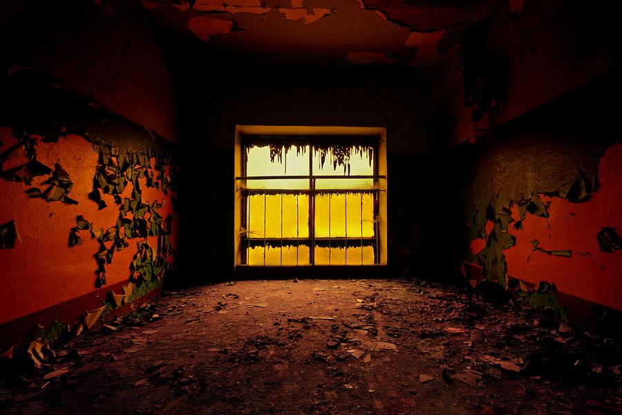 Y. Window by AbandonedZone