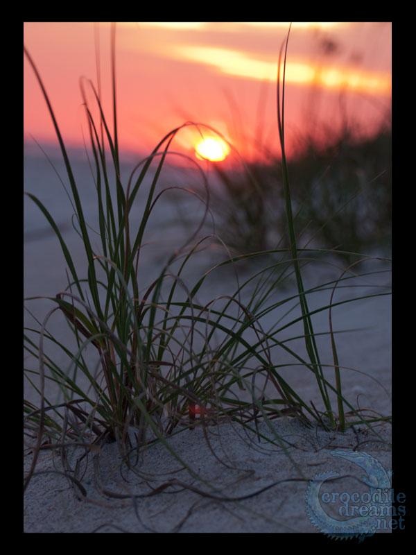 Oak Island Sunset by crocodiledreams