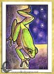 ACEO/ATC: Squirrel Treefrog