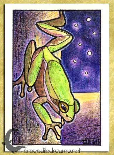ACEO-ATC: Squirrel Treefrog by crocodiledreams