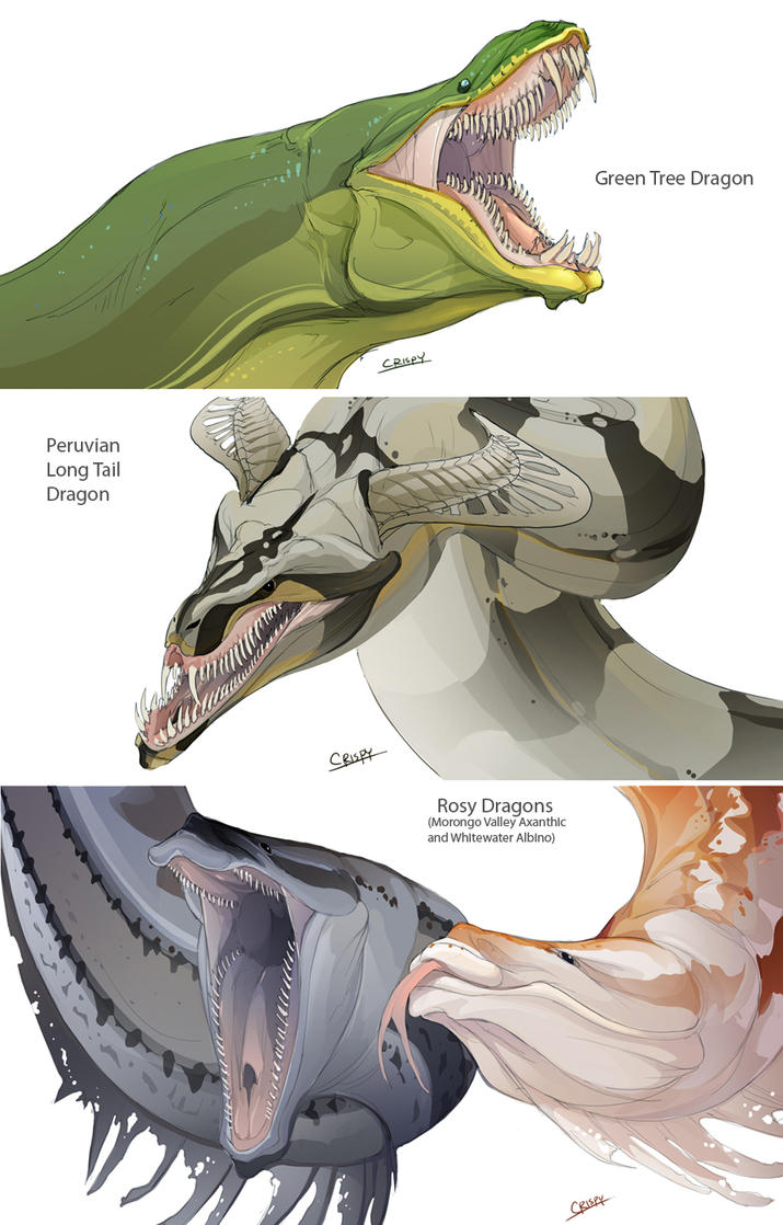 Snake Dragons by beast...