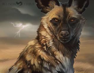 Wild Dog by beastofoblivion