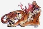 Strange Tiger
