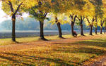 Autumn, already over..