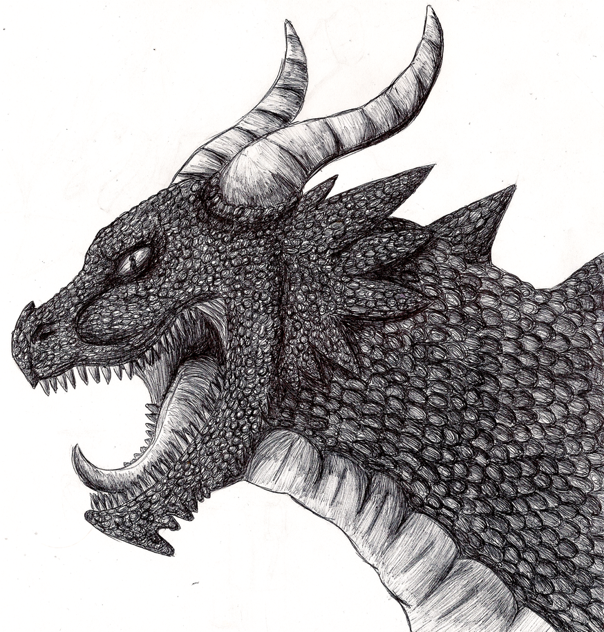 Realistic Dragon by EonShinato on deviantARTDrawings Of Dragons Realistic