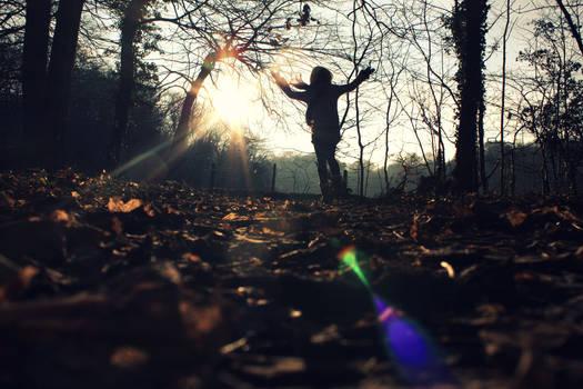 I miss the autumn