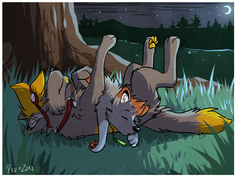 The Sleeping Duo by PivotalWolf