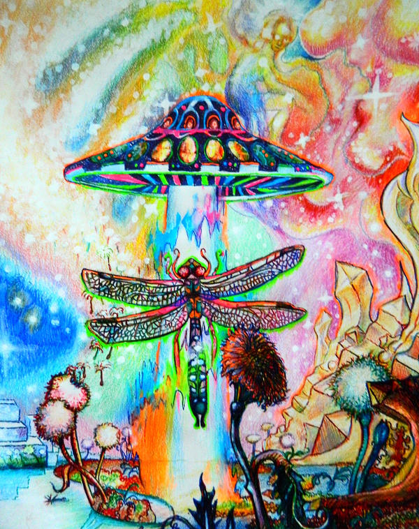 Cosmic Fungus and the Damselfly by CaelanTheAlien
