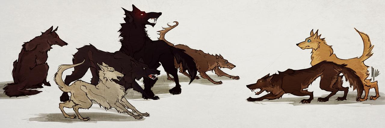 teen wolf\'s wolfs by radacs on DeviantArt